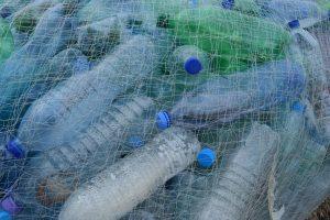 limpieza para un mejor planeta