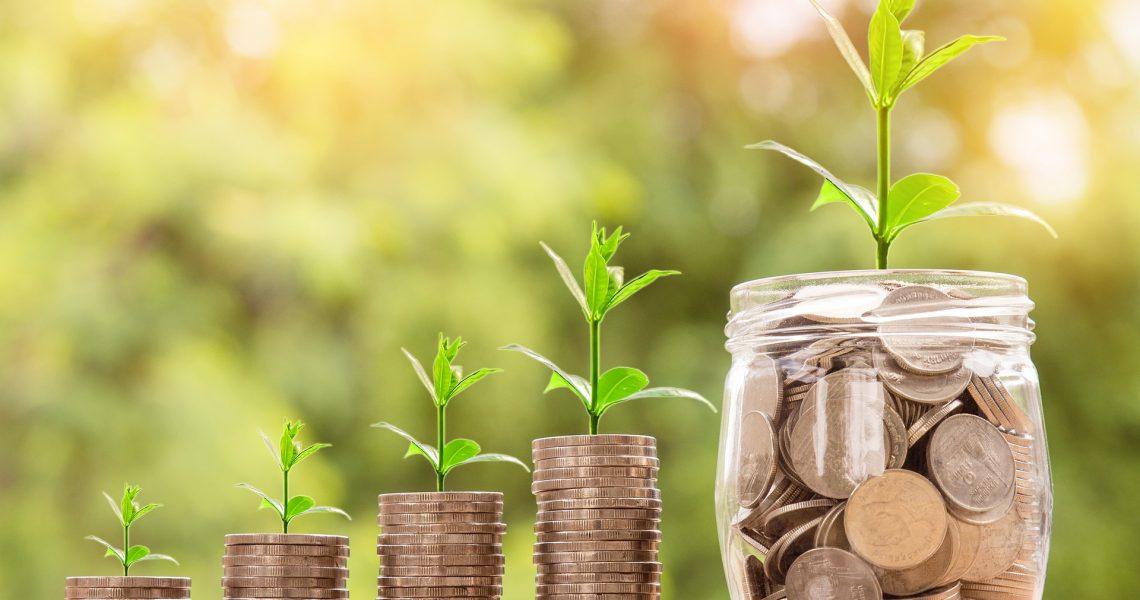 ahorrar siendo ecológico - strambótica
