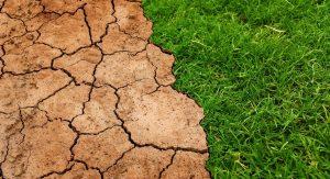 cambio climático stramboótica